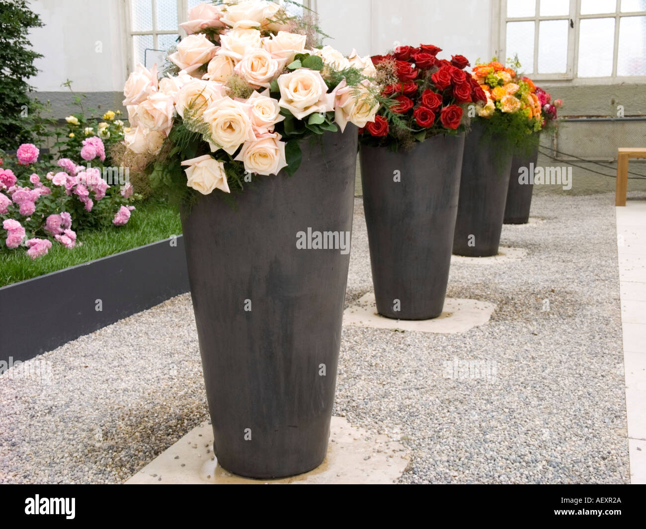 flower arrangement big vase decoration abstract concept idea background ecology ecosystem environment nature natural bloom bloss & flower arrangement big vase decoration abstract concept idea Stock ...