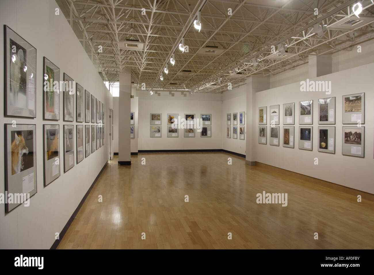 Art Gallery Aberystwyth Arts Centre West Wales UK Stock Photo
