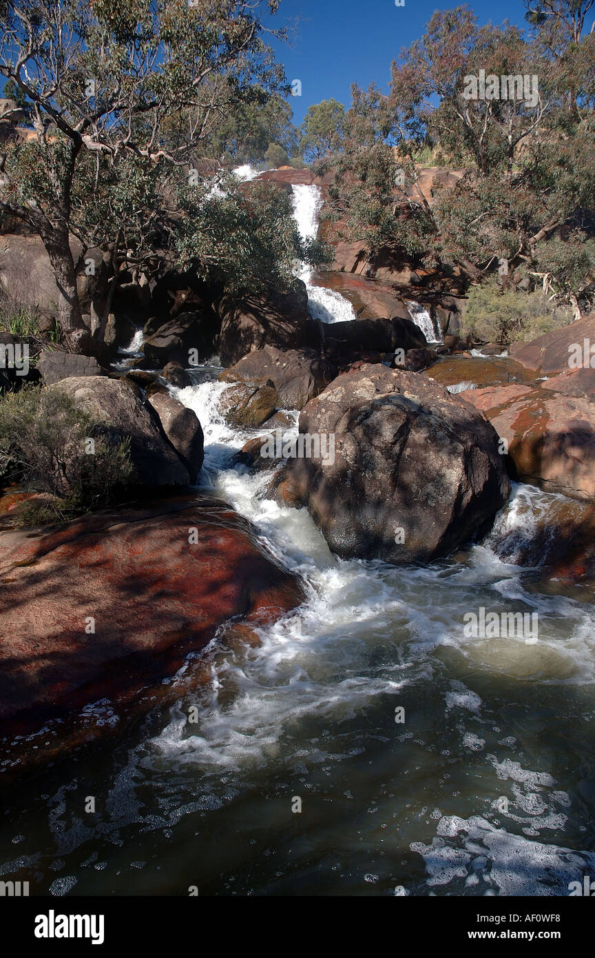 National Park Falls in winter John Forrest National Park, Darling Ranges east of Perth, Western Australia - Stock Image