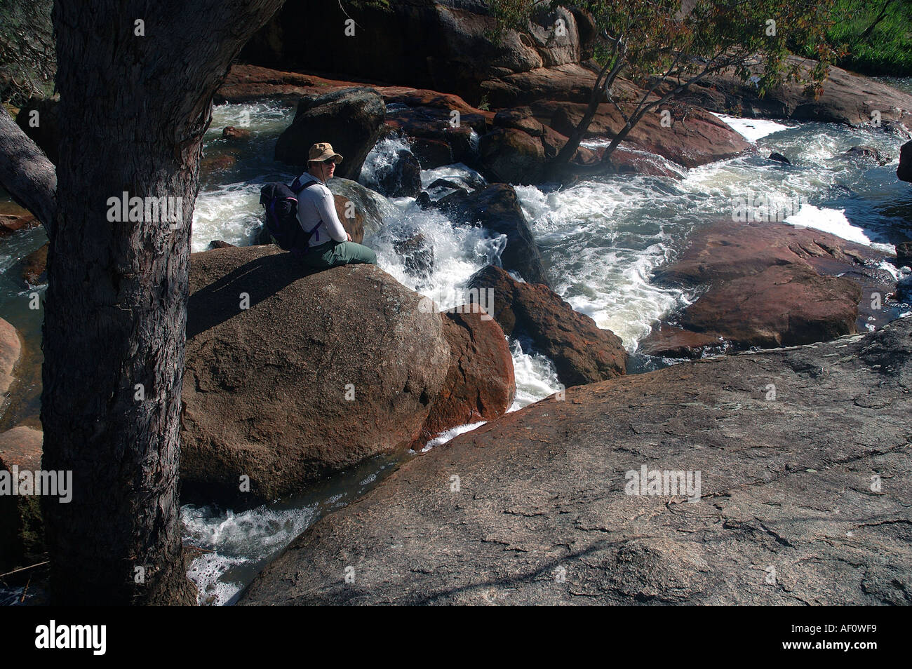 Bushwalker resting on a boulder in Jane Brook John Forrest National Park, Darling Ranges, Western Australia MR - Stock Image