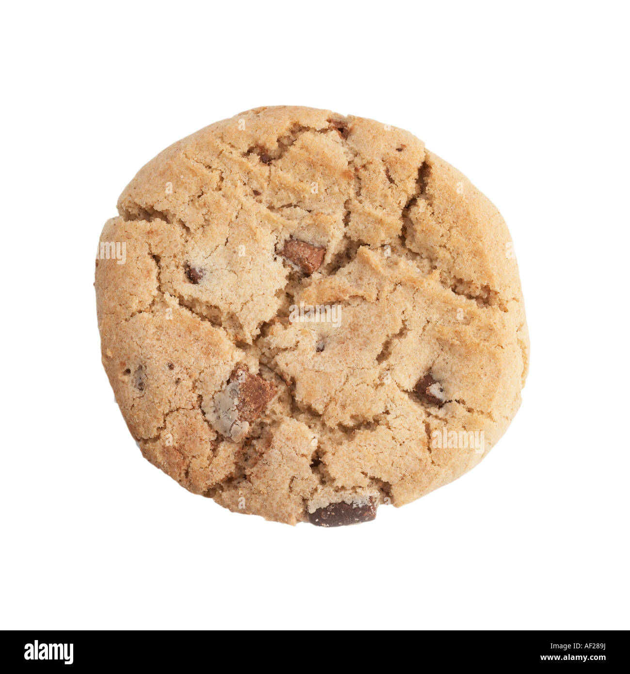 Chocolate chip cookie - Stock Image