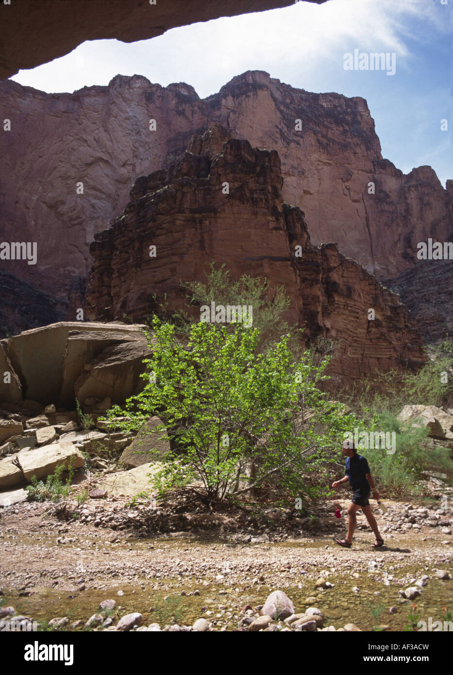 Matkatamiba Canyon (mile 147) is considered holy by the Hualapai Indians, USA, Arizona, Grand Canyon NP - Stock Image
