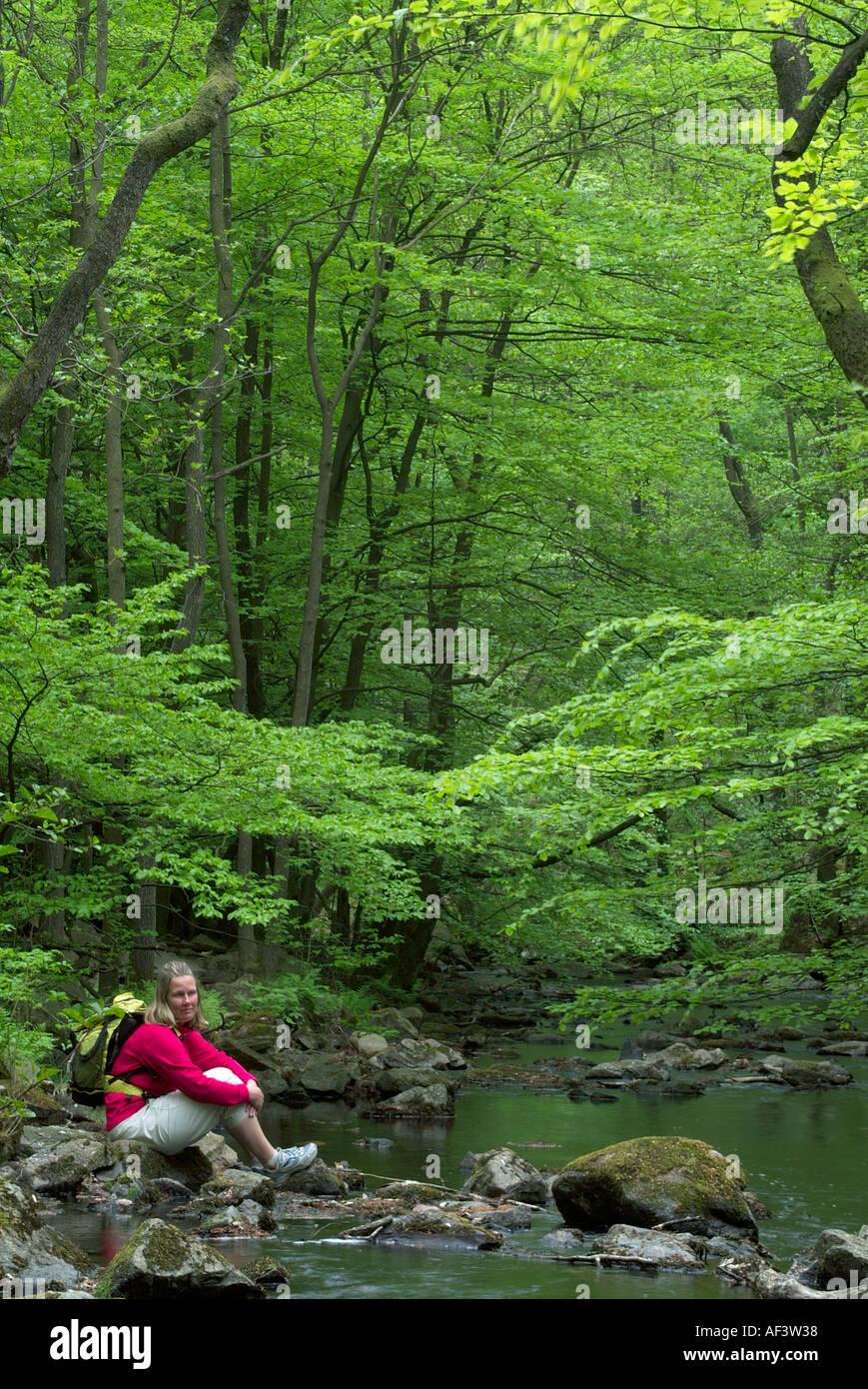 Girl Sitting in Woodland Soderasen Nationalpark Skane Sweden - Stock Image