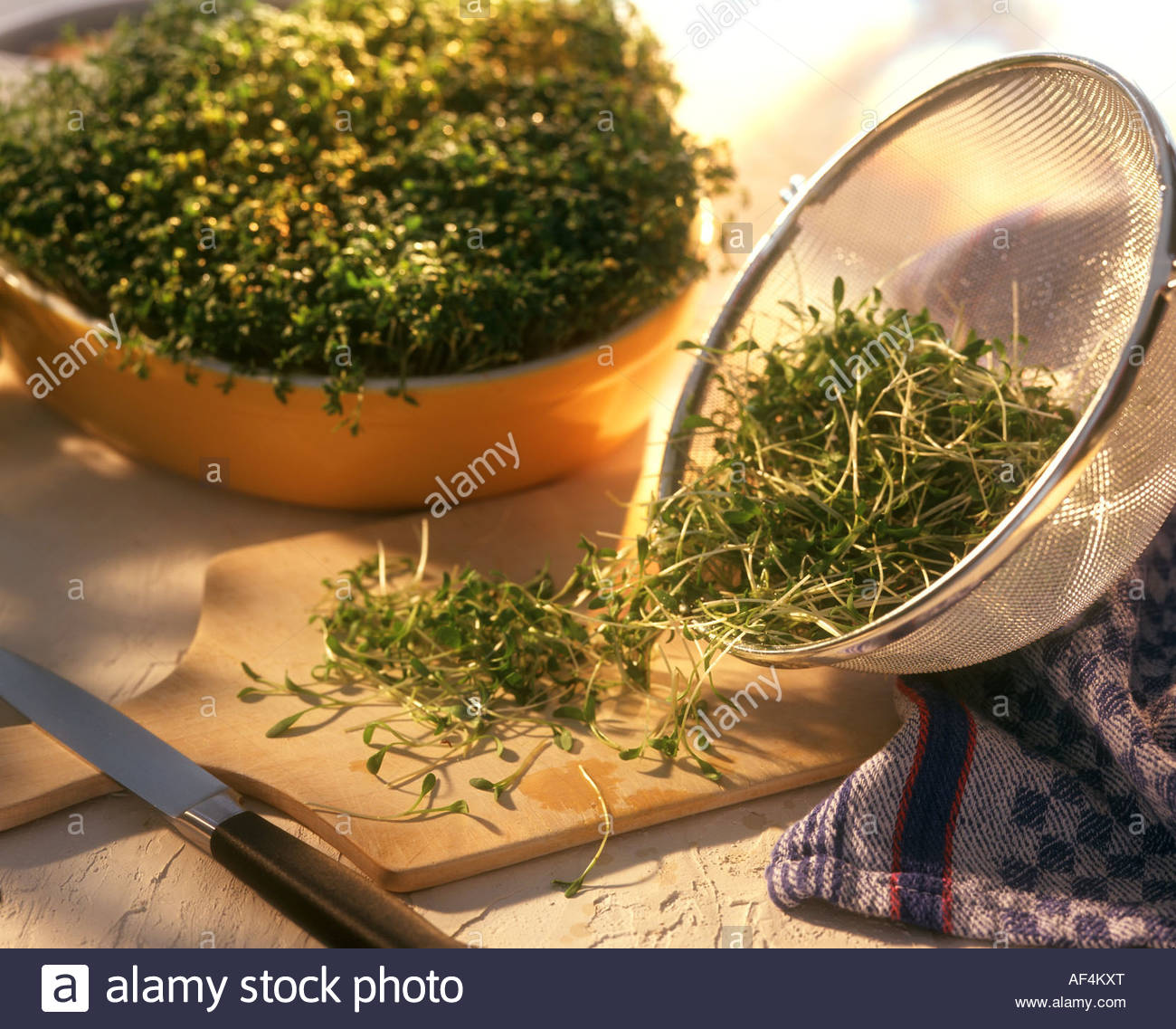 Garden cress in sieve, on wooden board and in a bowl Stock Photo ...