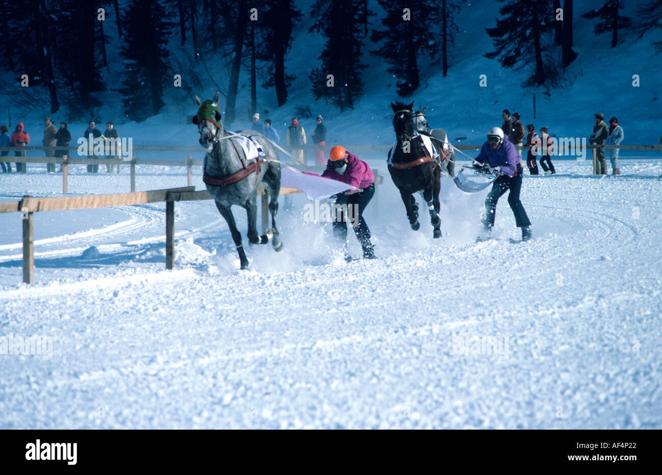 Horse and ski racing skijoring on a curve on the race track of frozen lake at St Moritz The Engadin Switzerland - Stock Image