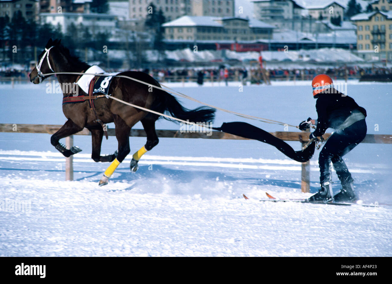 Horse and ski racer team on the race track on frozen lake at St Moritz The Engadin Switzerland - Stock Image