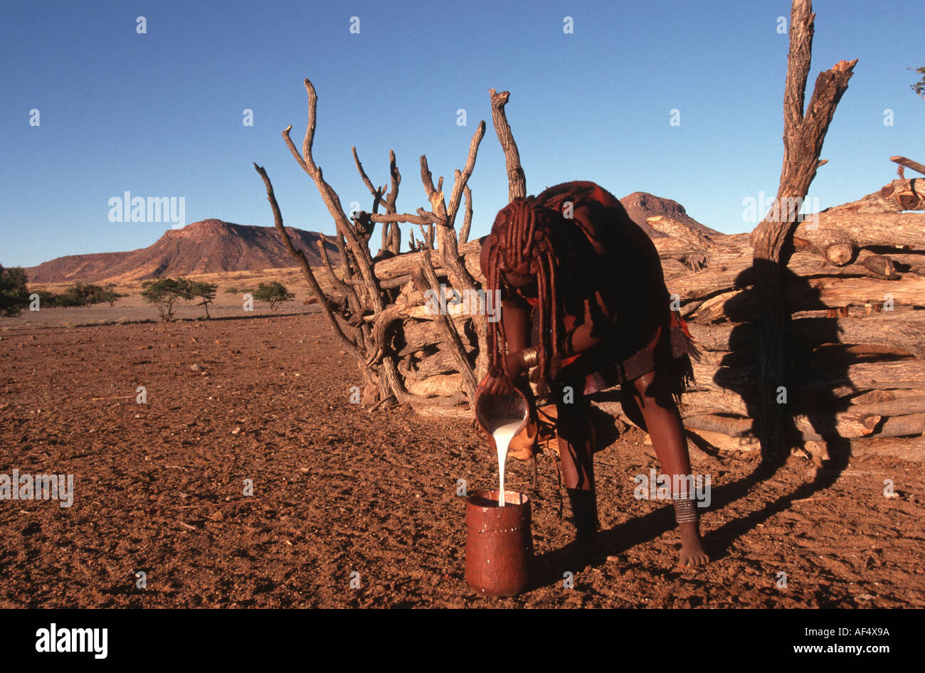 A Himba girl in a cattle Kraal Northern Namibia - Stock Image