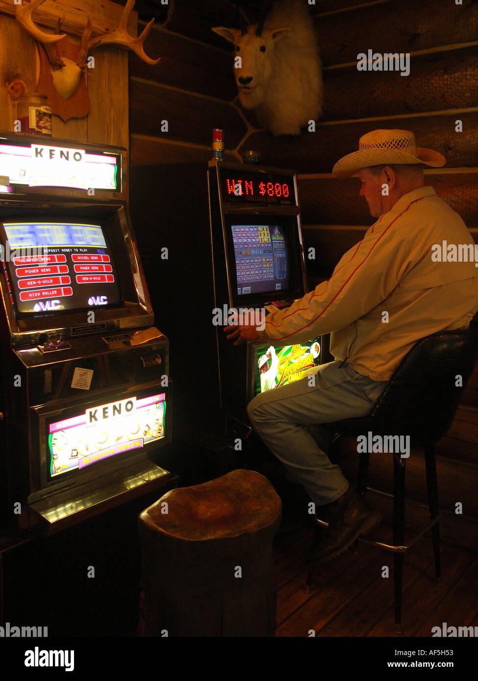 Midnight Gambler - Stock Image