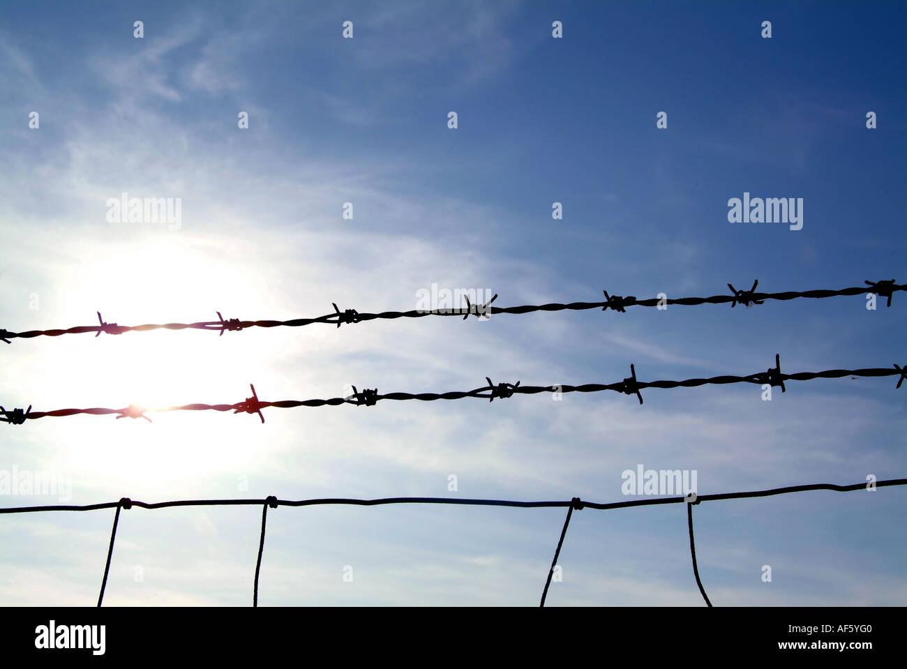 Spikey Wire Stock Photos & Spikey Wire Stock Images - Alamy