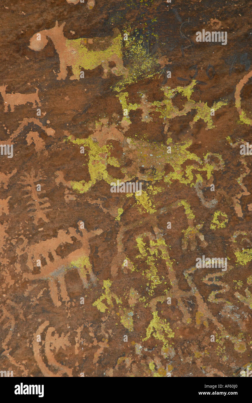Native American Petroglyphs Of Animals People And Spiritual Symbols