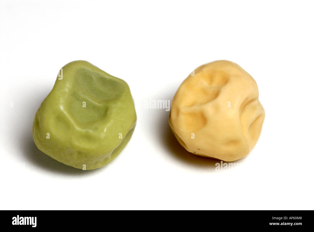 Green and yellow wrinkled pea seeds, traits Gregor Mendel studied in his genetics heredity experiments. - Stock Image