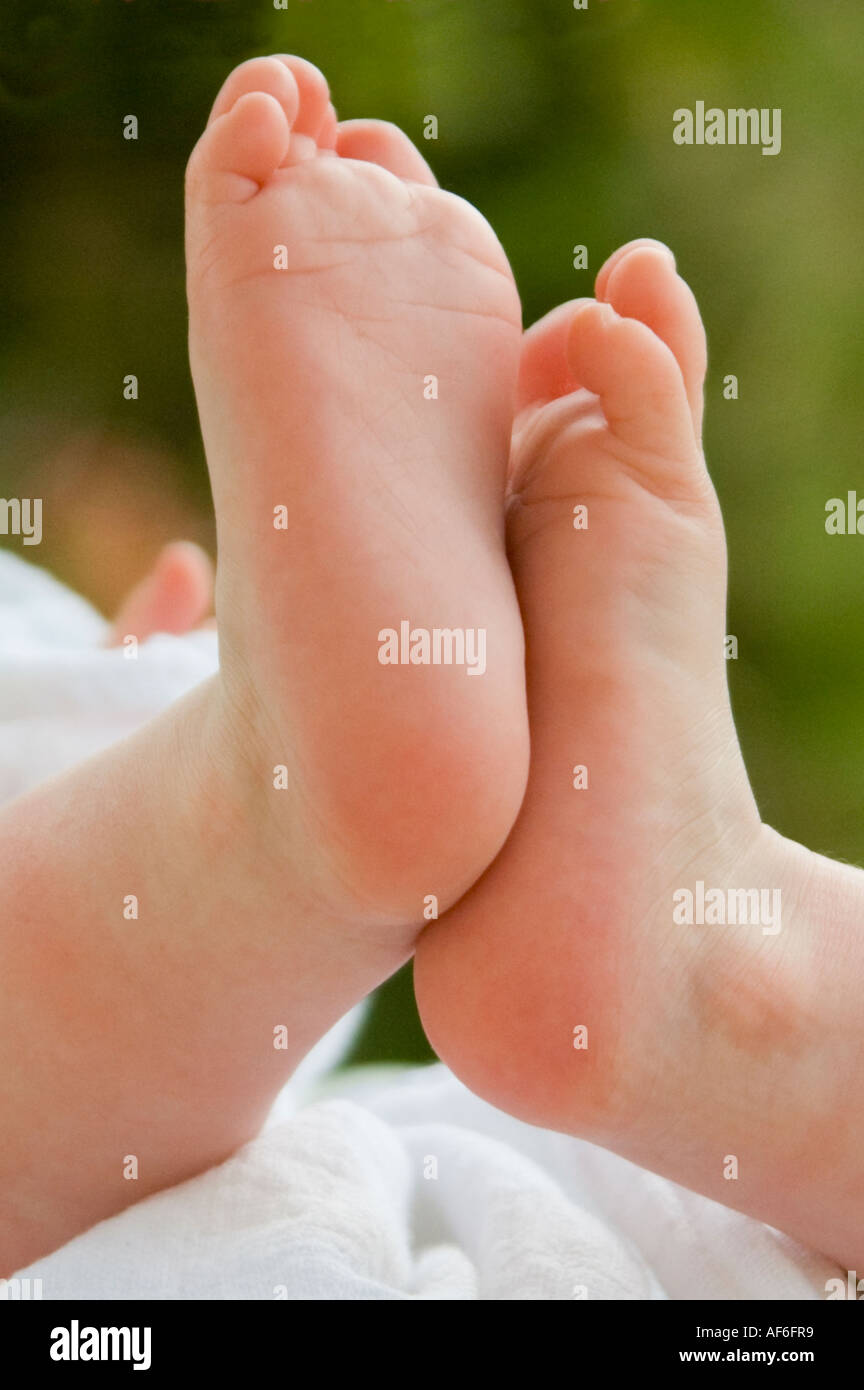 Vertical close up of a caucasian baby's tiny pink feet. - Stock Image