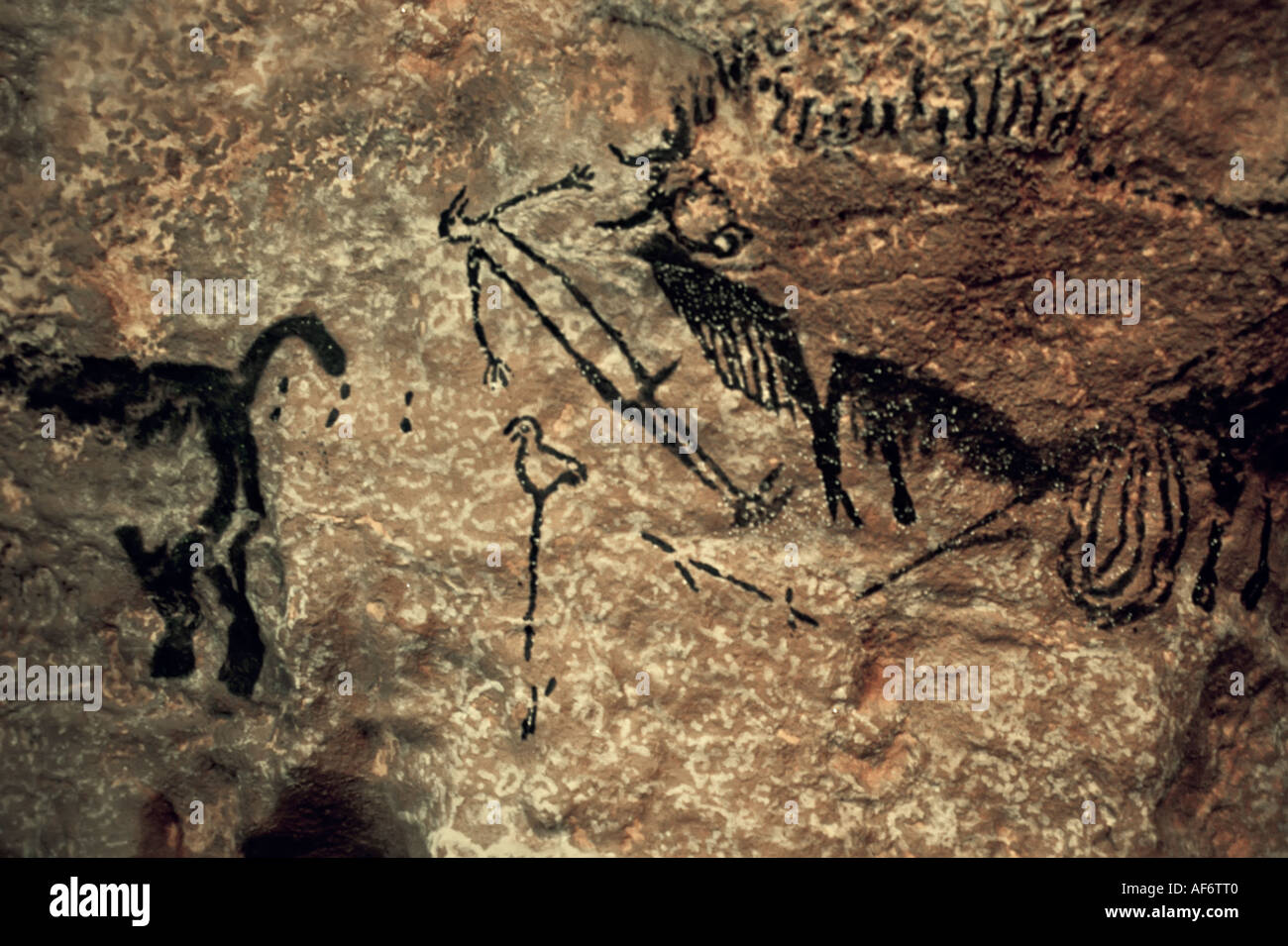 Replica painting cave art of animals and bird on stick with human and bison Lascaux cave at Le Thot Montignac Dordogne France - Stock Image