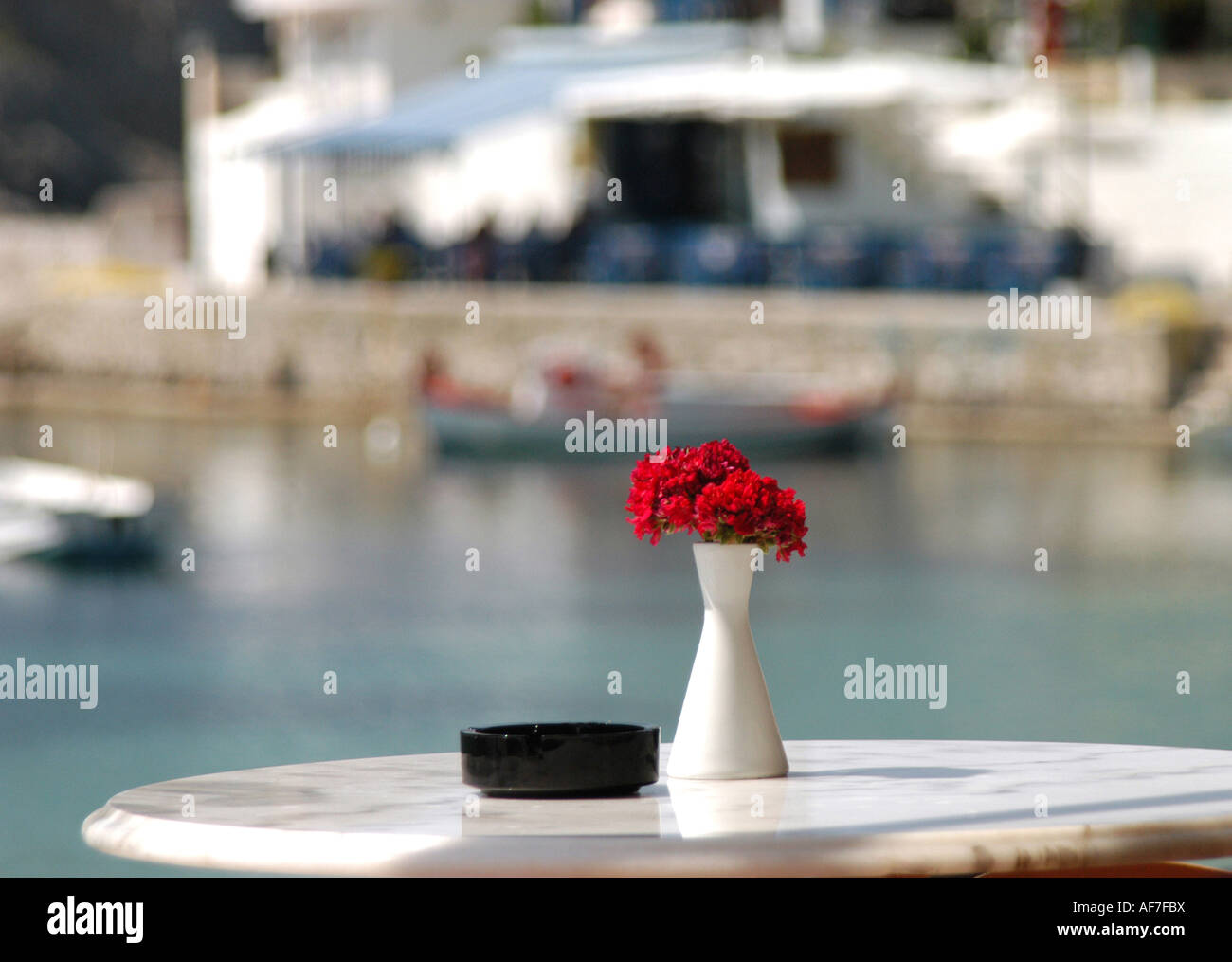 Red geranium on cafe table at Assos, Cephalonia, Greece - Stock Image