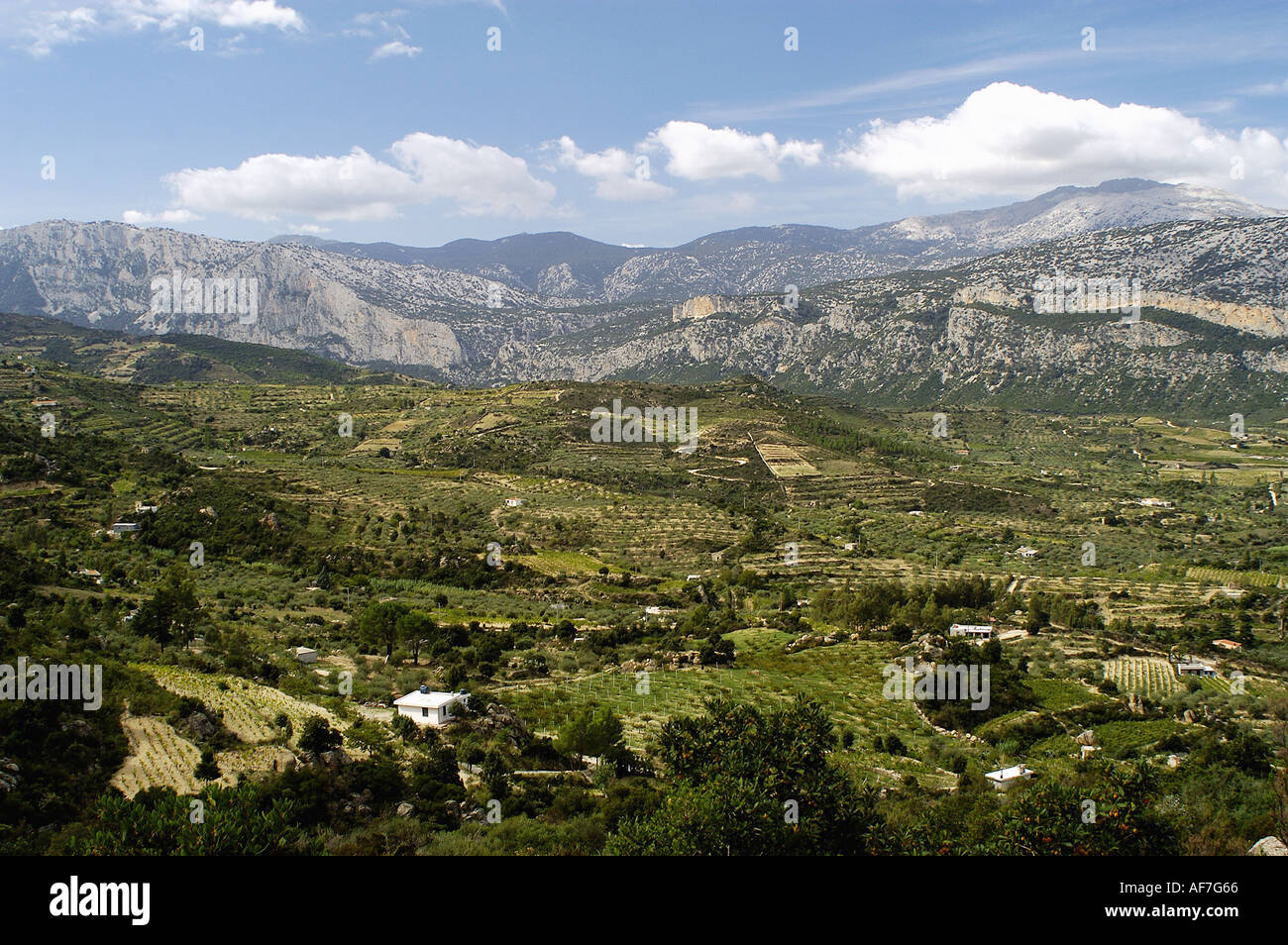 geography / travel, Italy, Sardinia, Parco di Orosei, mountain range, Valle di Oddeone, Additional-Rights-Clearance-Info-Not-Available - Stock Image