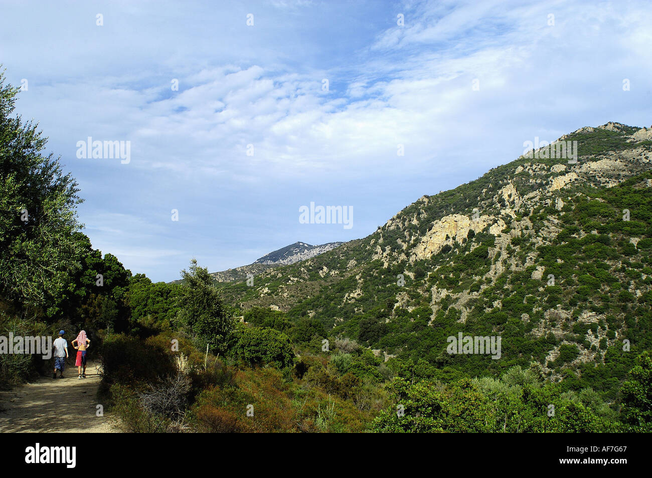 geography / travel, Italy, Sardinia, Parco di Orosei, track to 'Su Gorroppu', Additional-Rights-Clearance-Info-Not-Available - Stock Image