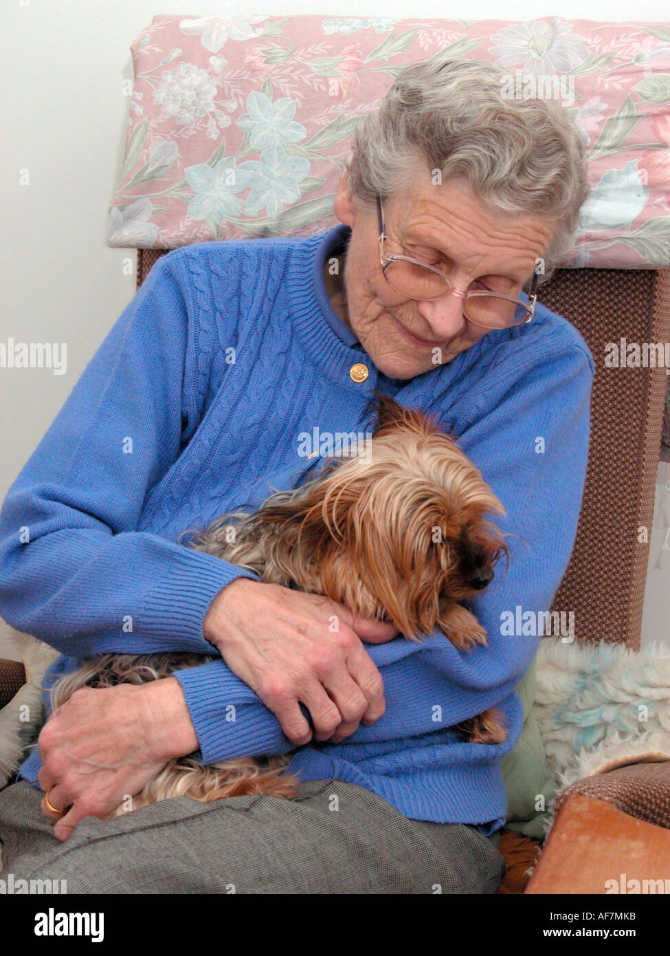 elderly woman fussing her poorly pet yorkshire terrier dog