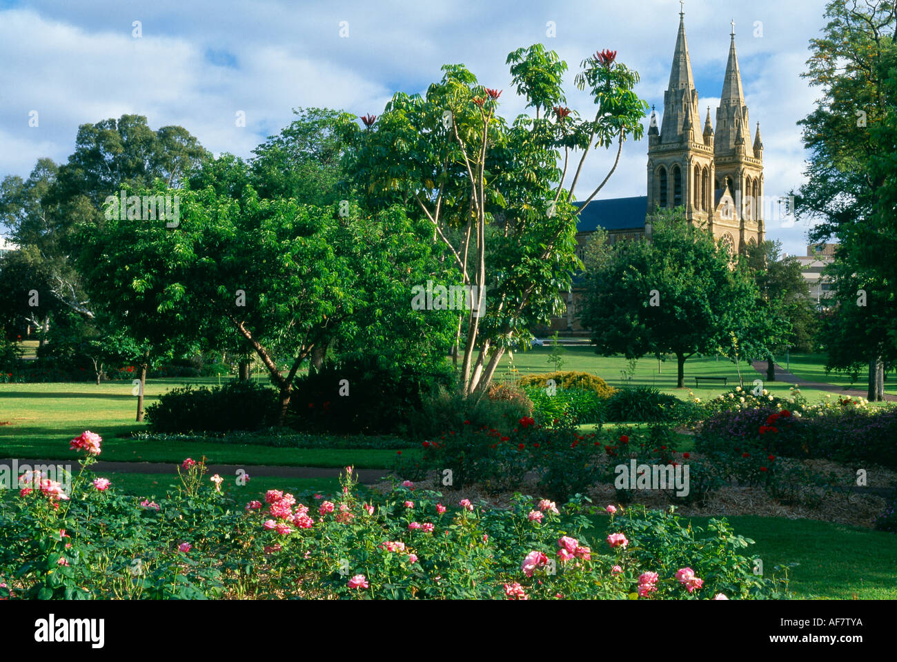St Peters Cathedral and Pennington Gardens Adelaide South Australia - Stock Image
