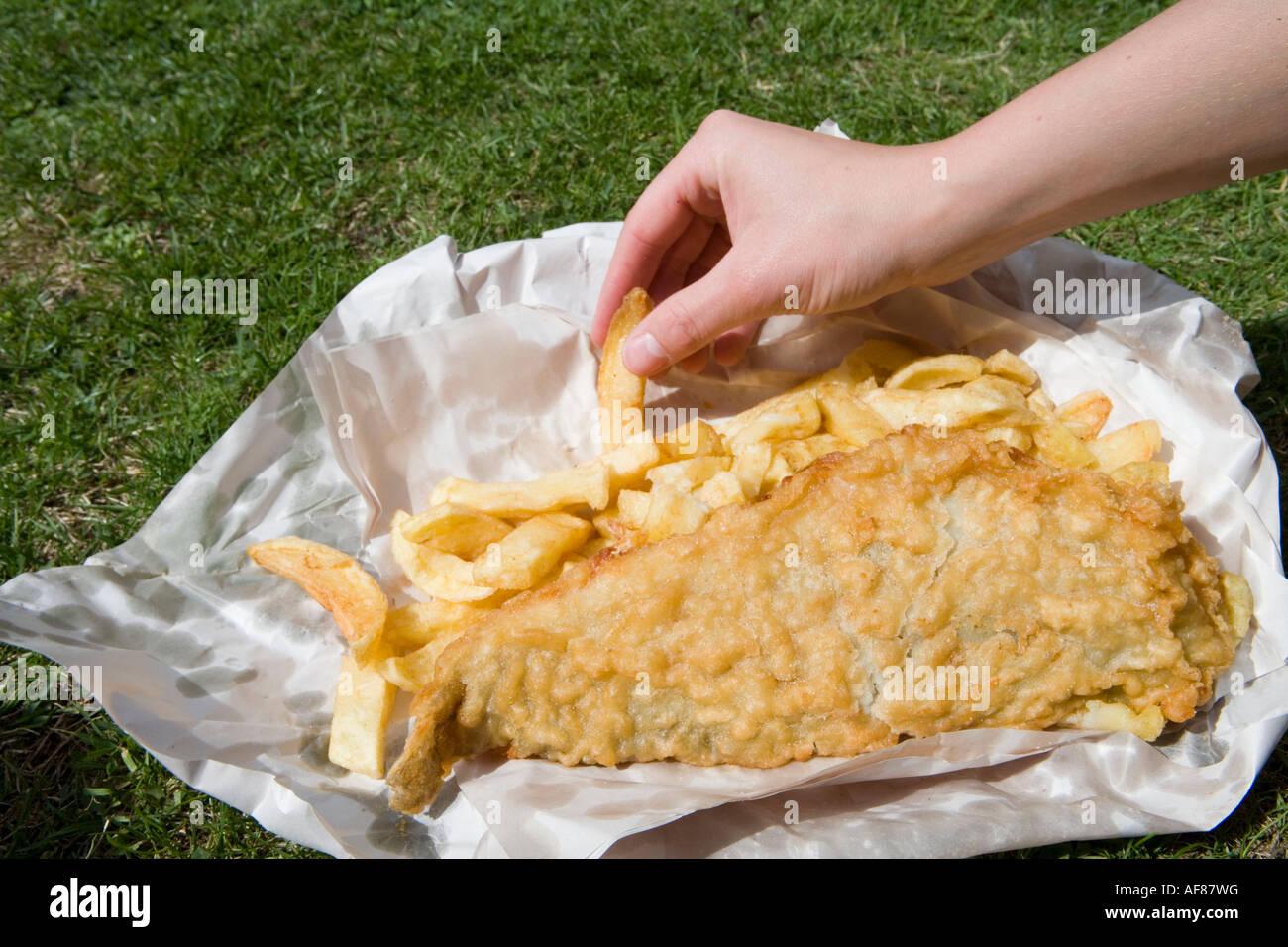 Enjoying Fish & Chips on Lawn, From Leo Burdock Fish & Chips Shop Stock Photo: 13863771 - Alamy