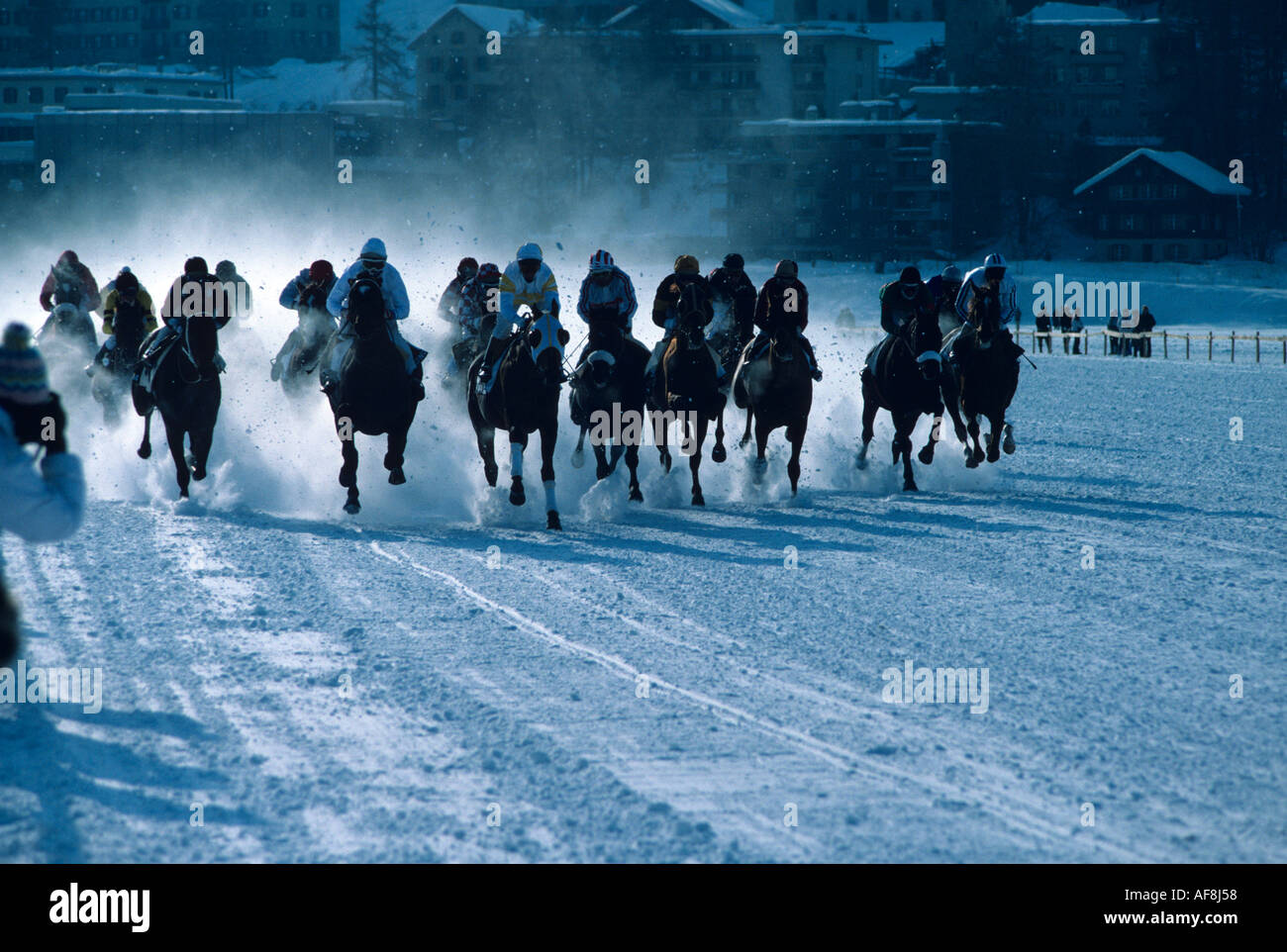 Winter horse racing with powder snow flying on track made on the frozen lake at St Moritz The Oberengadin Switzerland - Stock Image