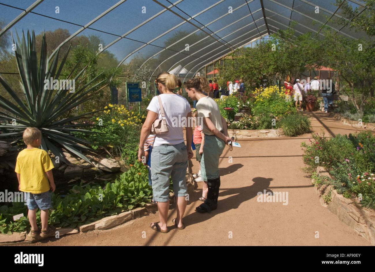 Etonnant Arizona Phoenix Desert Botanical Garden Butterfly Garden