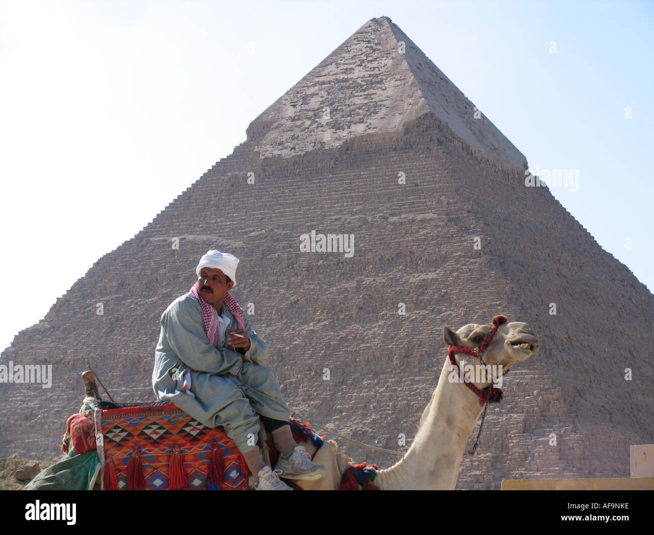 Smoking Egyptian man sitting on a camel in front of a pyramid in Giza, Egypt, Kairo, Giza, Gizeh, Giseh - Stock Image