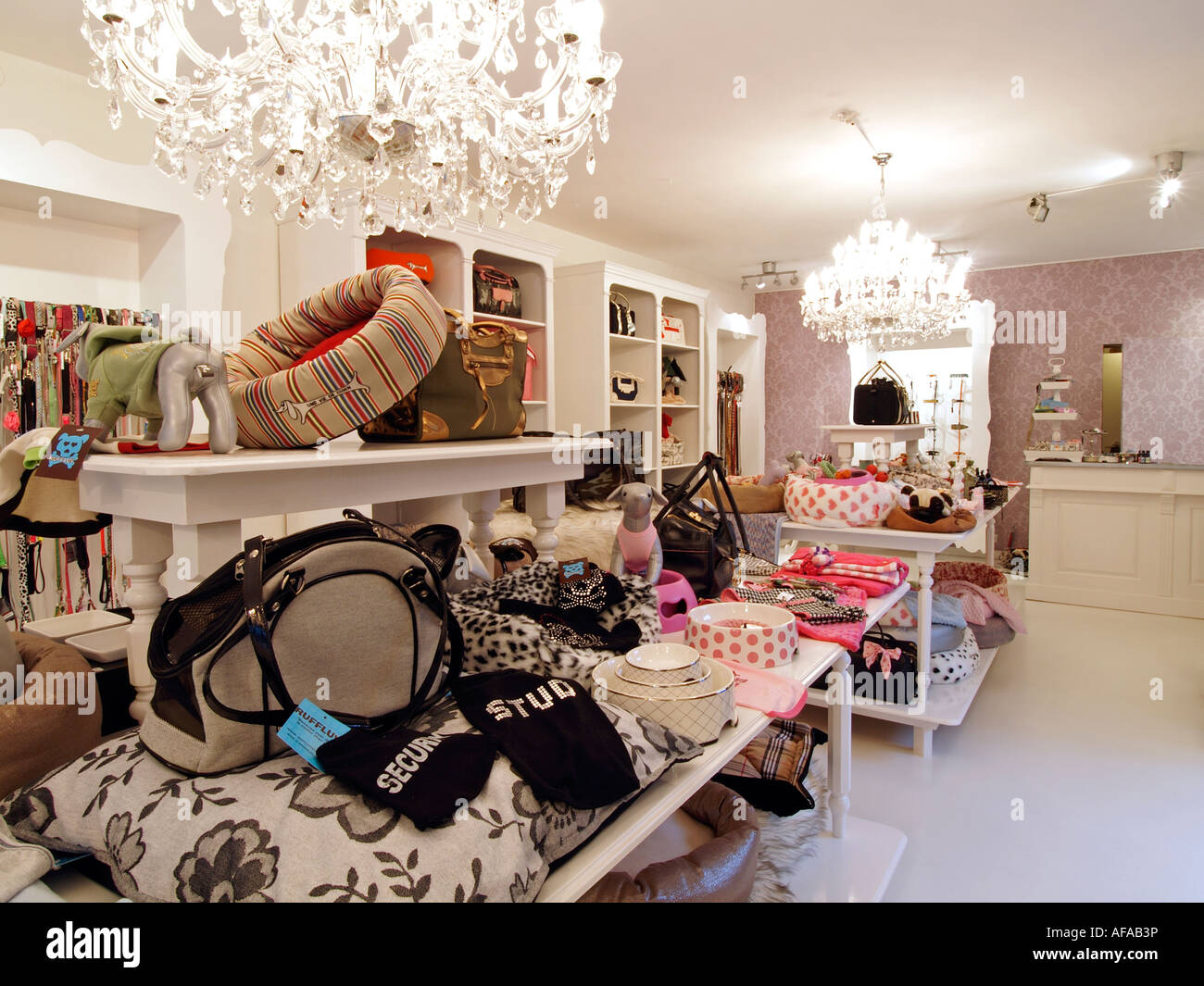 Luxury pet accessory store interior showing many products like luxurious rugs pillows food bowls and clothes for - Stock Image