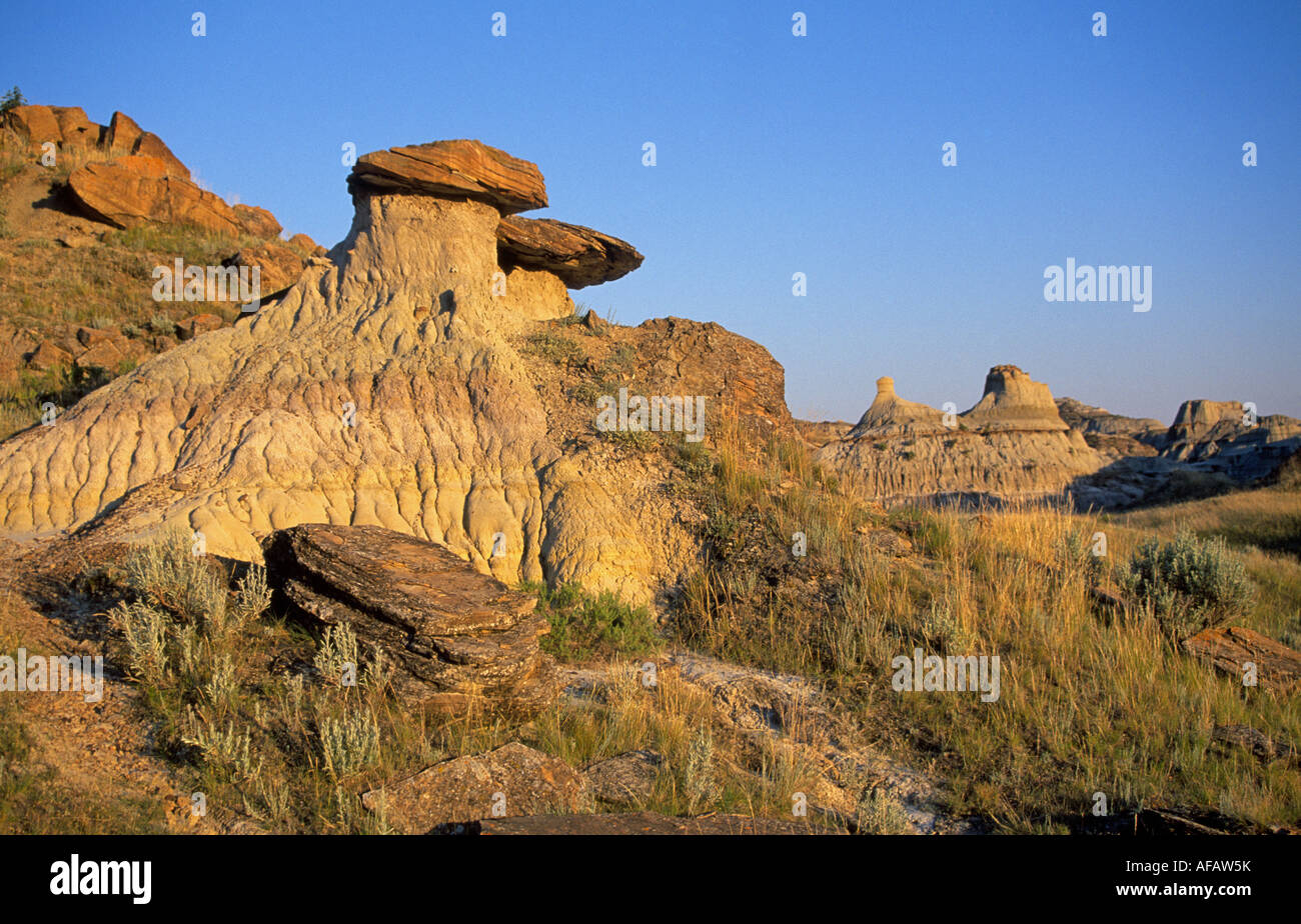 A view of the eroded desert landscape of Dinosaur Provencial Park, Alberta, Canada. - Stock Image