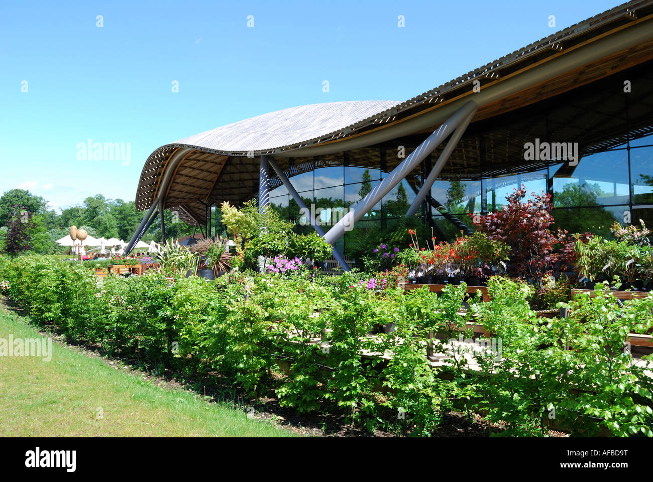 Garden Shop, Savill Building, Savill Garden, Windsor Great Park, Englefield Green, Surrey, England, United Kingdom - Stock Image
