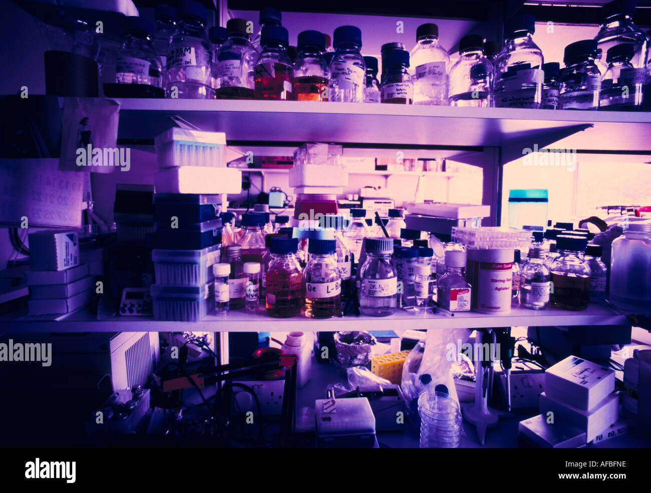 Shelves of Pharmaceutical bottles - Stock Image