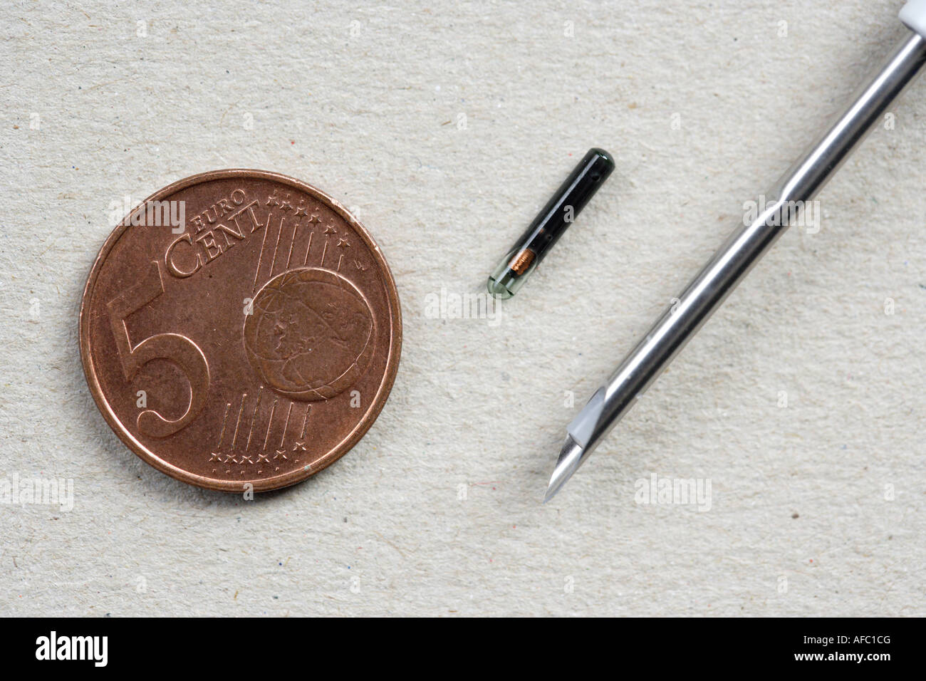 Identification chip with syringe and cannula next to a coin All data of an animal are saved in the chip - Stock Image