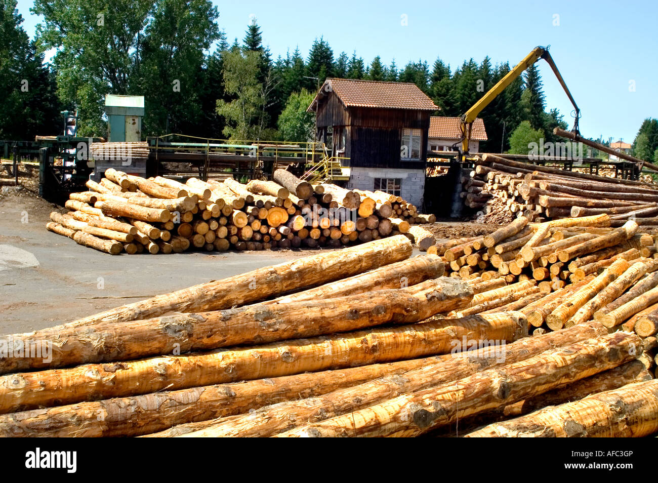 Saw mill Timber Wood wood-sawyer lumber lumberjack wood log