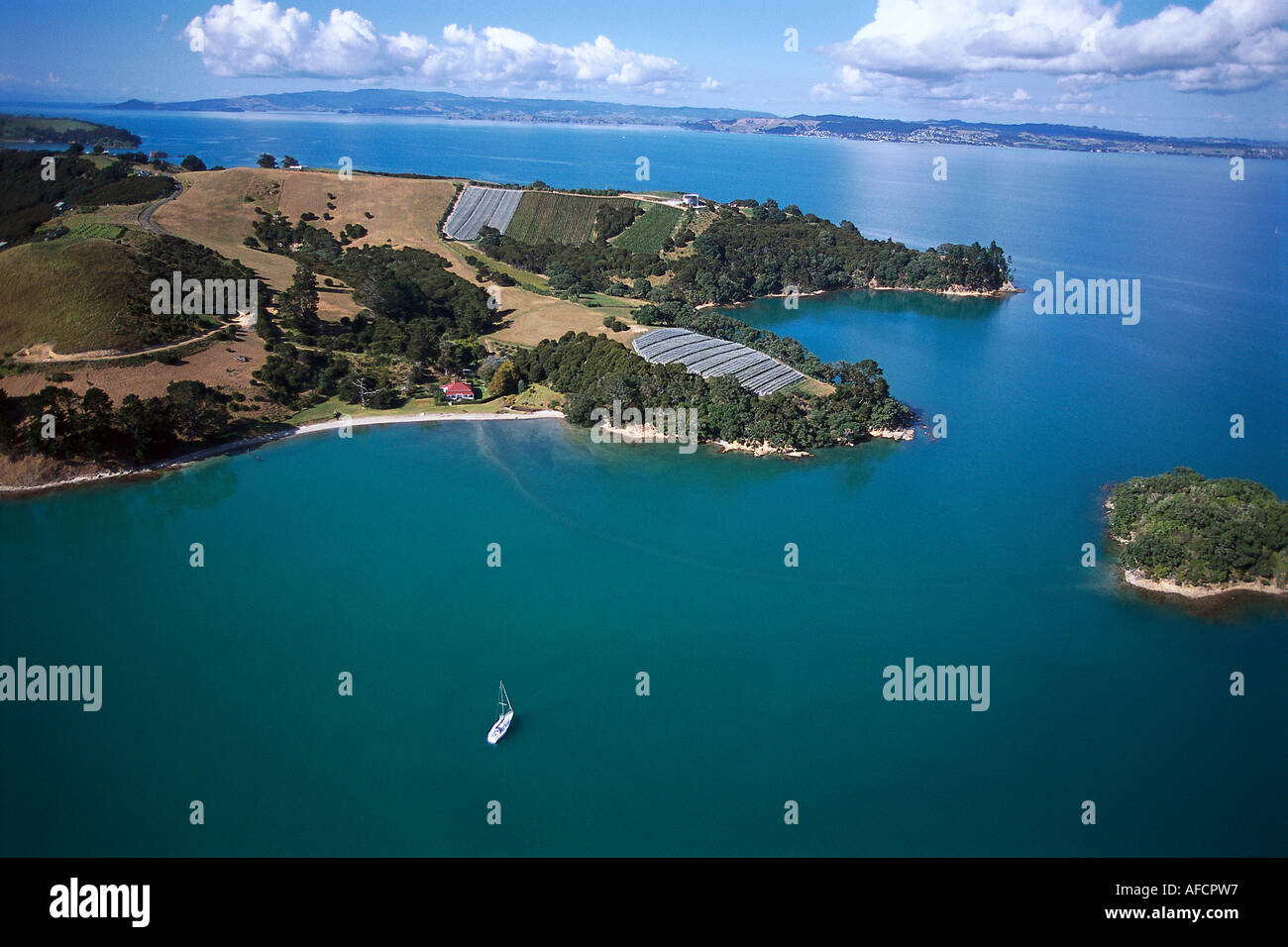 Aerial Photo, Waiheke Island, Hauraki Gulf Near Auckland, New Zealand - Stock Image