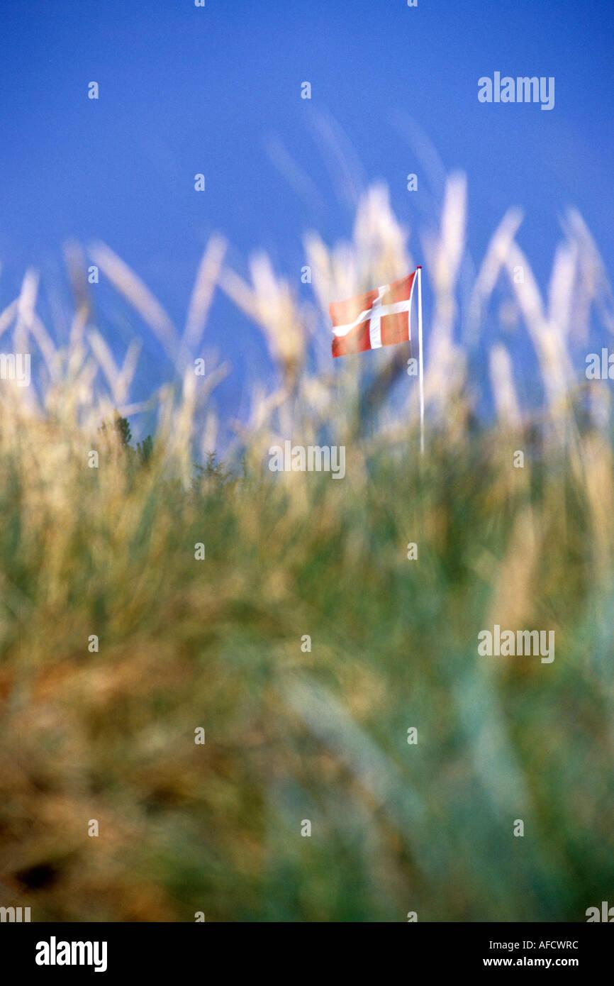 Dannebrog Flag behind sand dunes, Blovand, Southern Jutland, Denmark - Stock Image