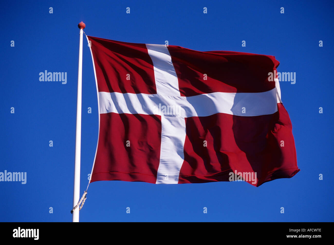 Dannebrog Danish Flag, Near Ribe, Southern Jutland, Denmark - Stock Image