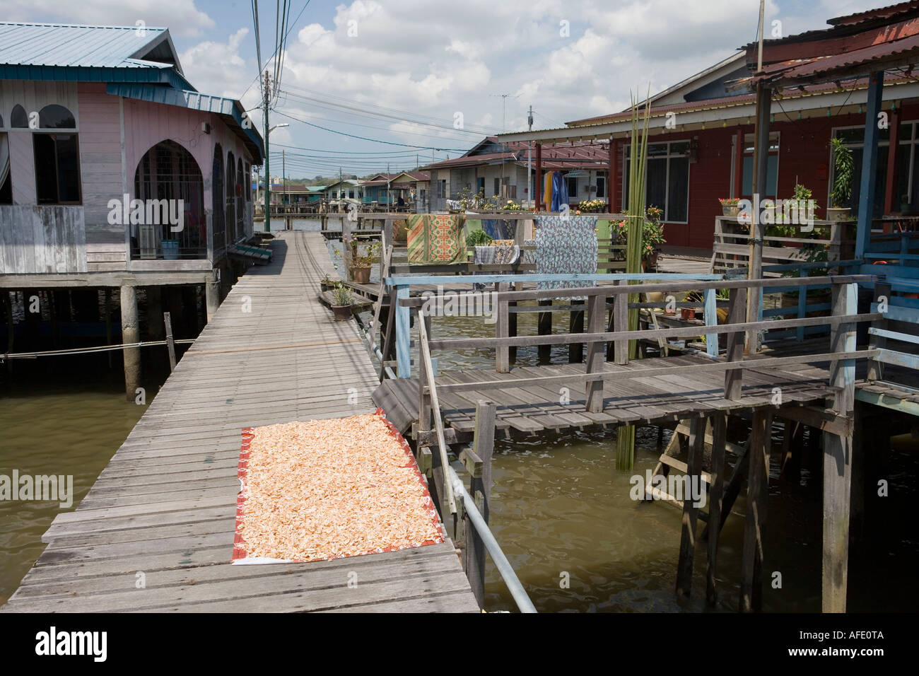 Drying Shrimp, Kampong Ayer Water Village, Bandar Seri Begawan, Brunei Darussalam, Asia - Stock Image