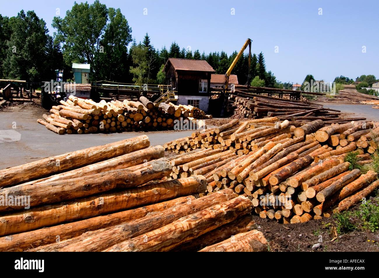 Saw mill timber wood sawyer lumber lumberjack