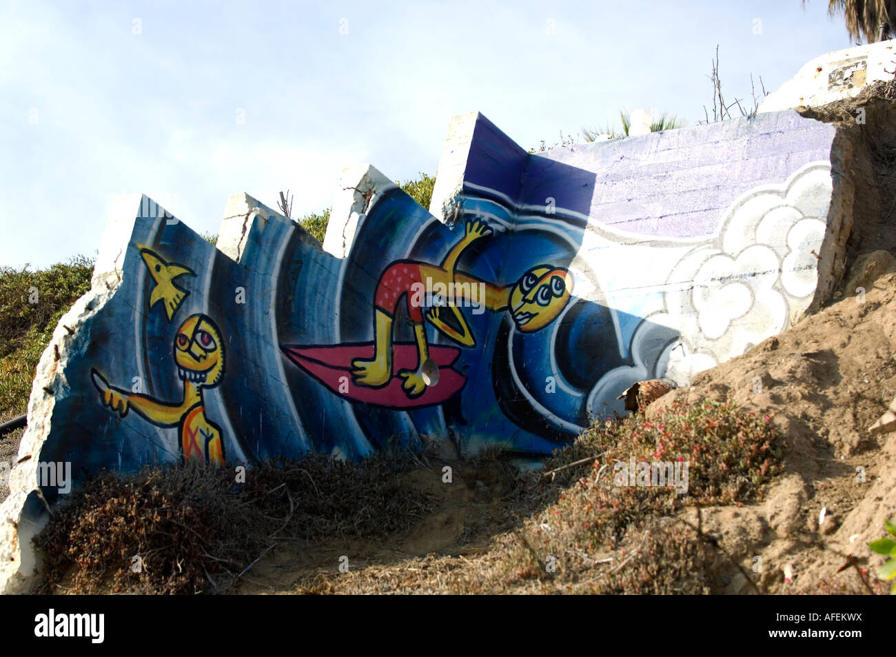 Art Mural De Plage Laguna