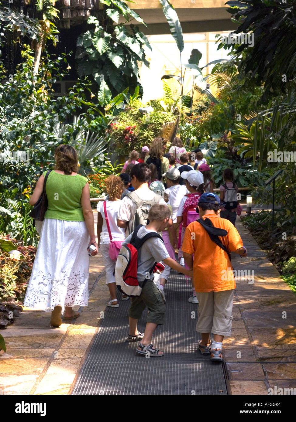 A party of schoolchildren visiting the indoor tropical plant section of Parc Phoenix the botanical gardens - Nice French Riviera - Stock Image