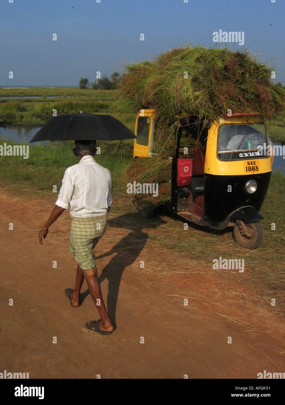 Man with umbrella passing a motor rickshaw loaded with grass or hay on Vypeen Beach on Vypeen Island in Kerala in India - Stock Image
