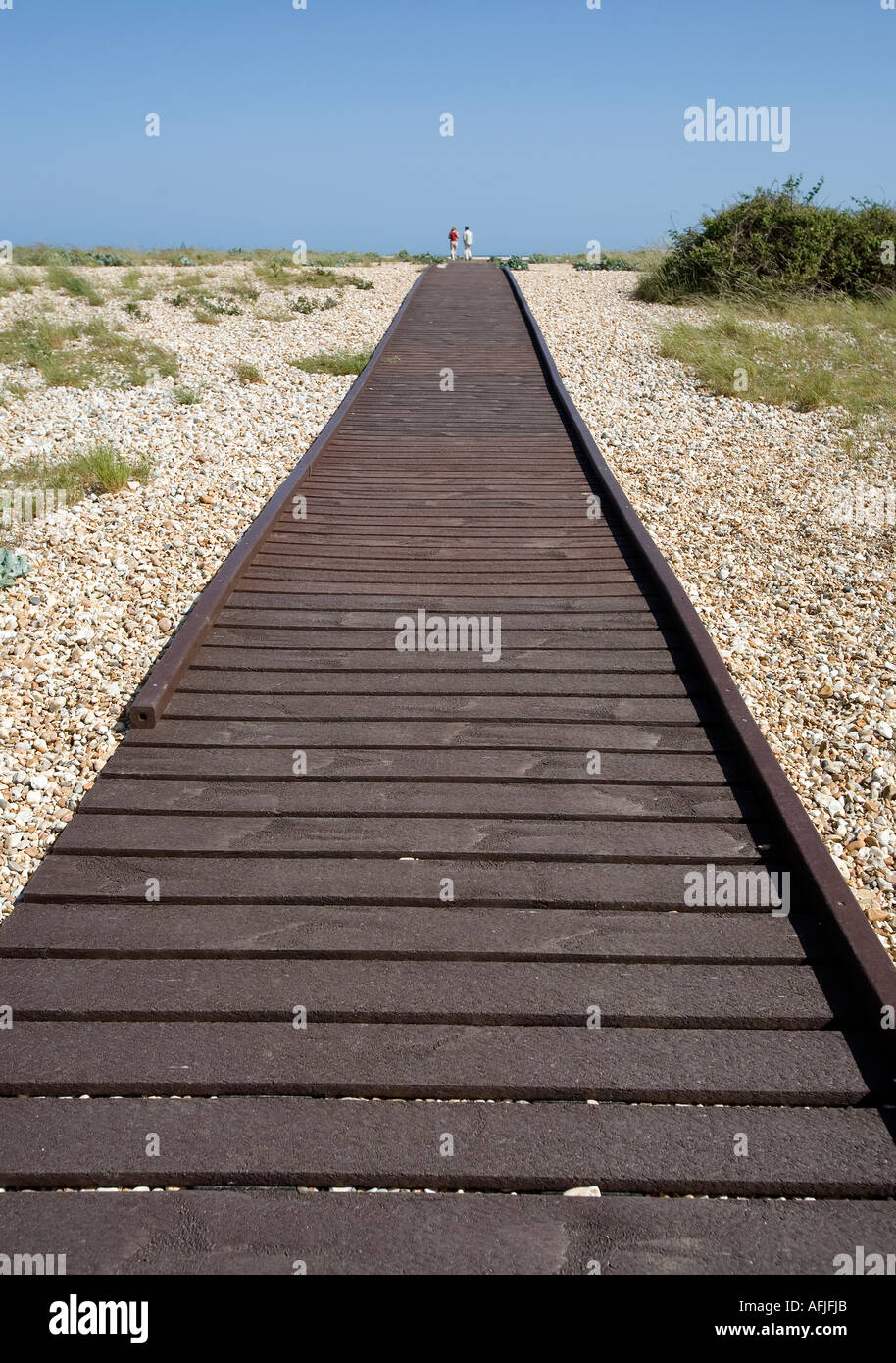 A planked walk way across part of Pagham beach West Sussex England constructed for easy access and to protect plants and wildlif - Stock Image