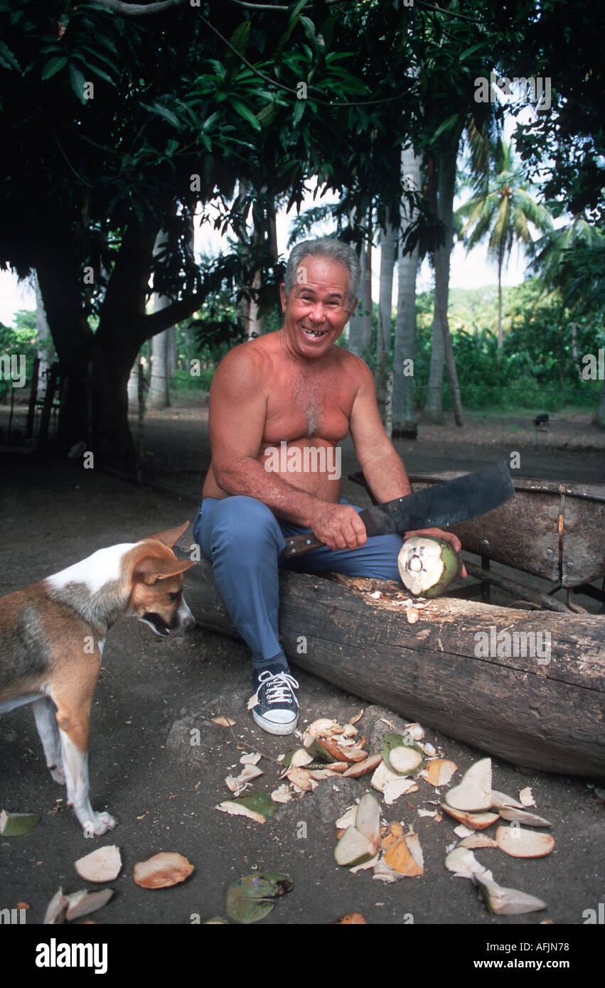 Cuban farmer chopping open a coconut whilst a dog inspects the debris Holguin Cuba - Stock Image