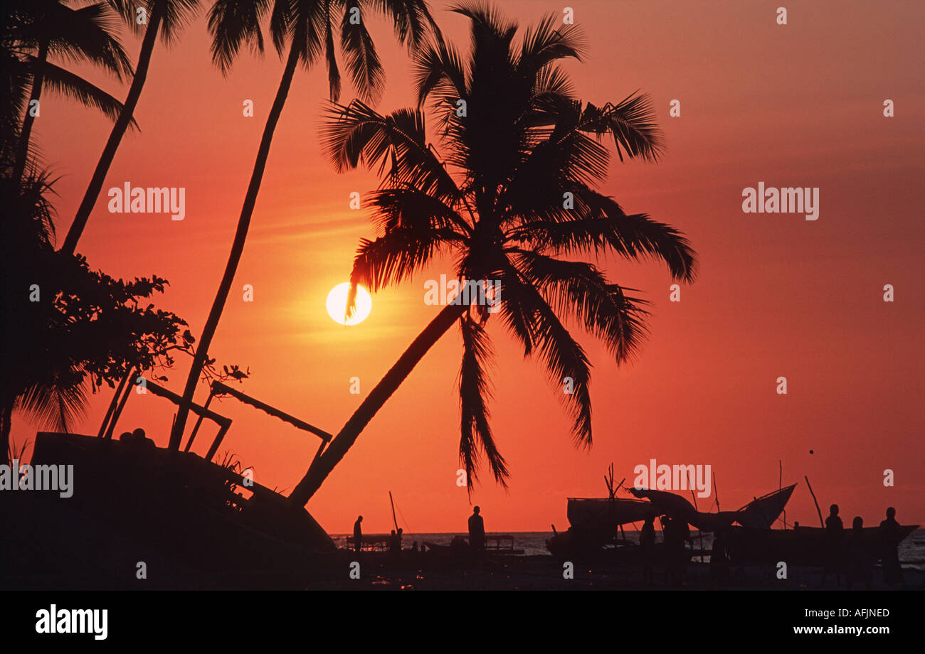 Silhouetted dhows and palm trees at sunset Nungwi Northern tip of Zanzibar Tanzania East AfricaStock Photo