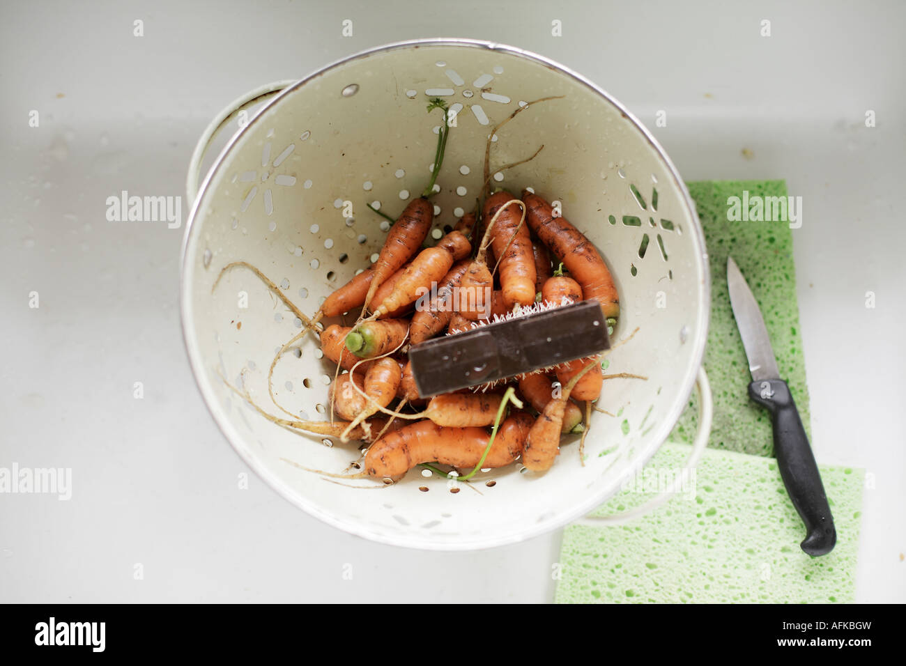 Homegrown organic carrots in a cullendar being scrubbed and prepared Stock Photo