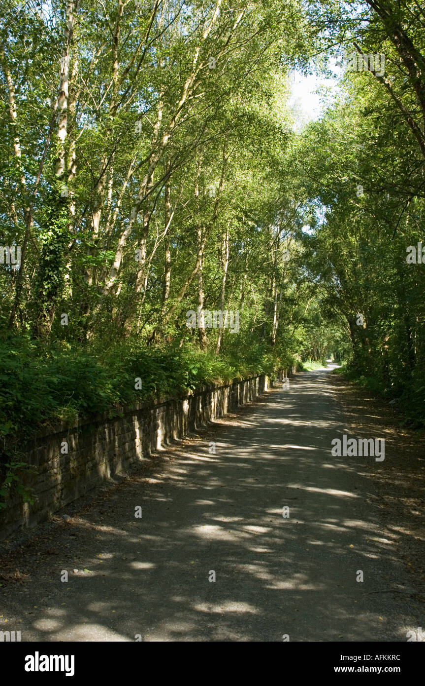 The Ystwyth Trail footpath and cycle way on the old course of the railway at Llanilar Ceredigion west wales - Stock Image