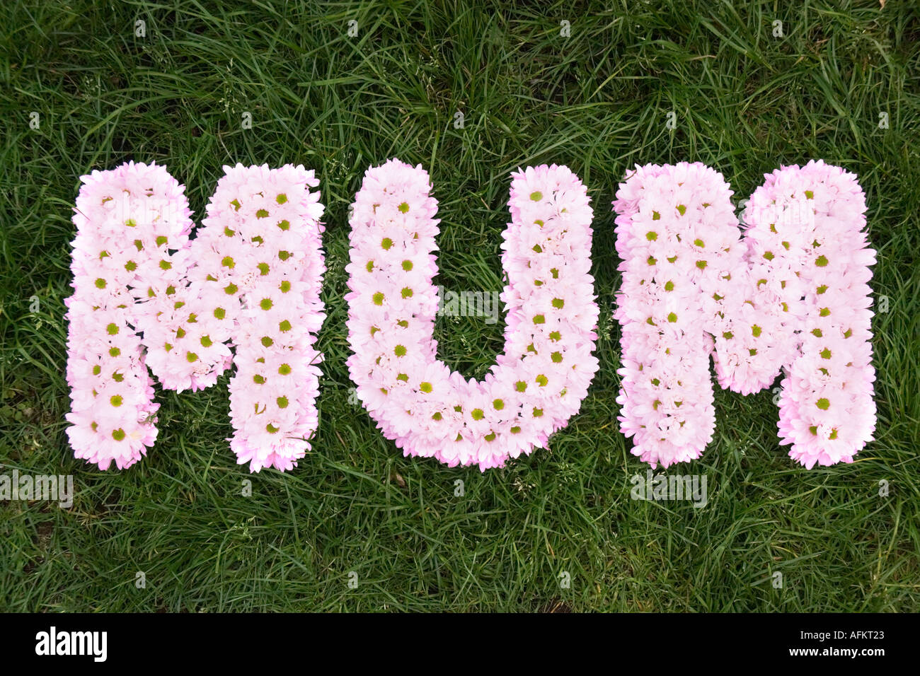 Pink Funeral Flowers Spelling The Word Mum Grass Background Stock