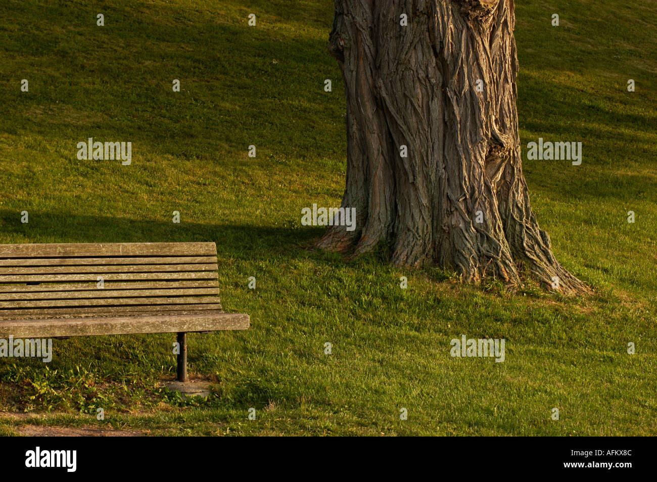 Perk Bench Stock Photos & Perk Bench Stock Images - Alamy