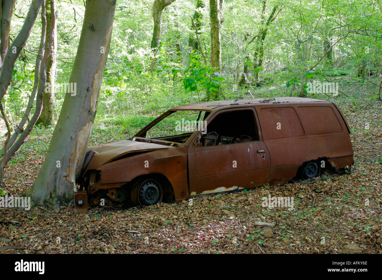 Rusted Car Abandoned In Woods Stock Photo 4562797 Alamy
