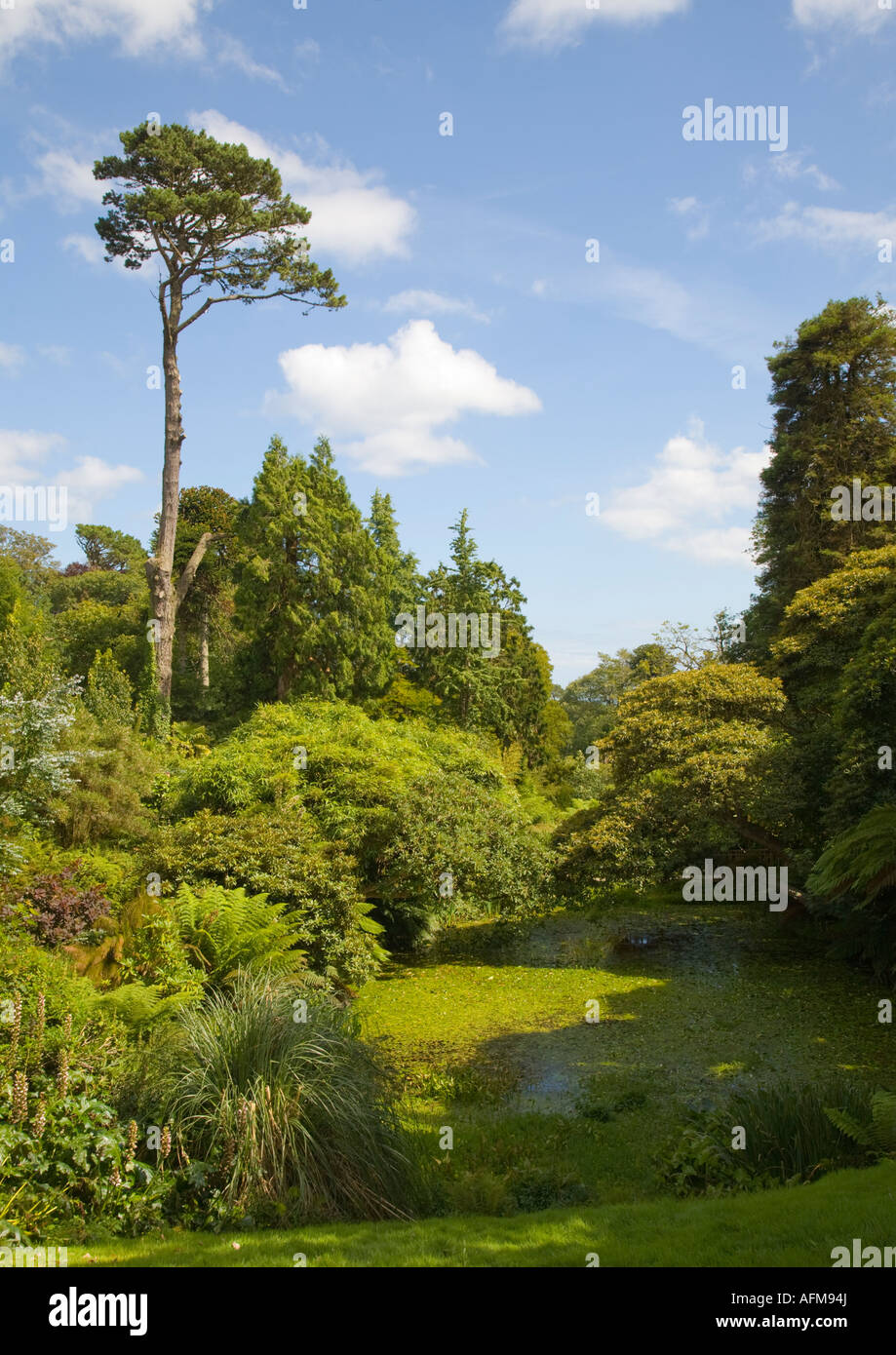 The gardens, created mainly in the 19th century, of were one of the finest gardens in England of their period, with - Stock Image