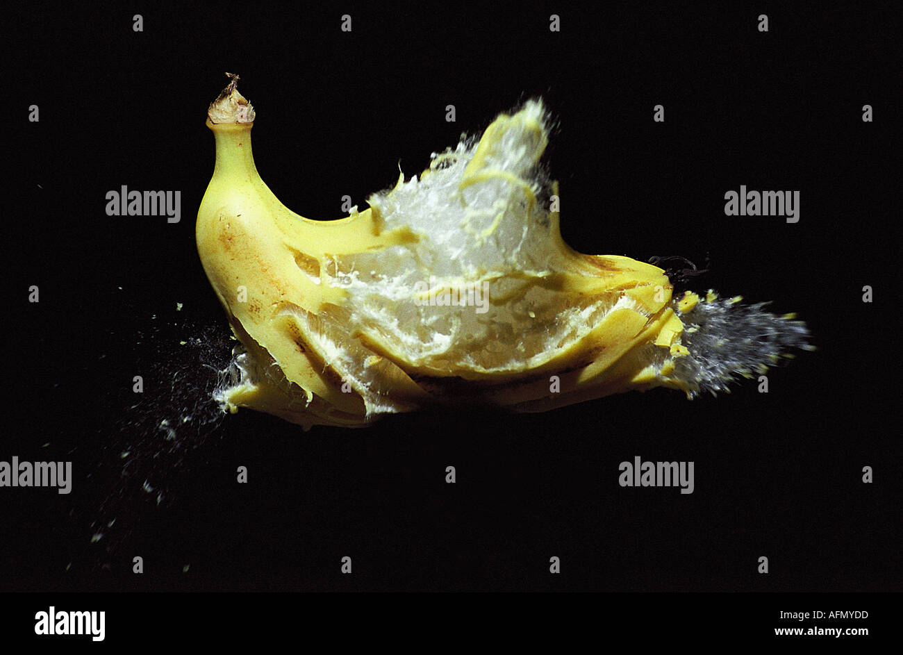 High speed photography showing a banana exploding on impact from 22 calibre rifle bullet - Stock Image